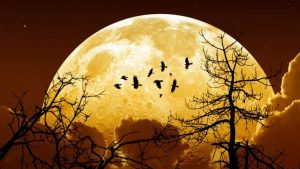 super-lune-rare-2-768x432